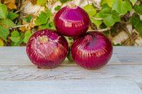 Cebolla roja tierna de Gáldar