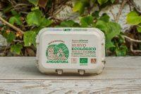 Huevos Ecológicos de La Angostura 6 unidades